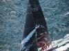 Puma Ocean Racing Newport Rhode Island